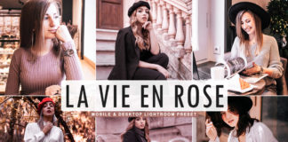 Free La Vie En Rose Lightroom Preset