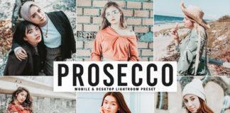 Free Prosecco Lightroom Preset