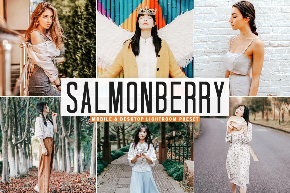 Free Salmonberry Lightroom Preset