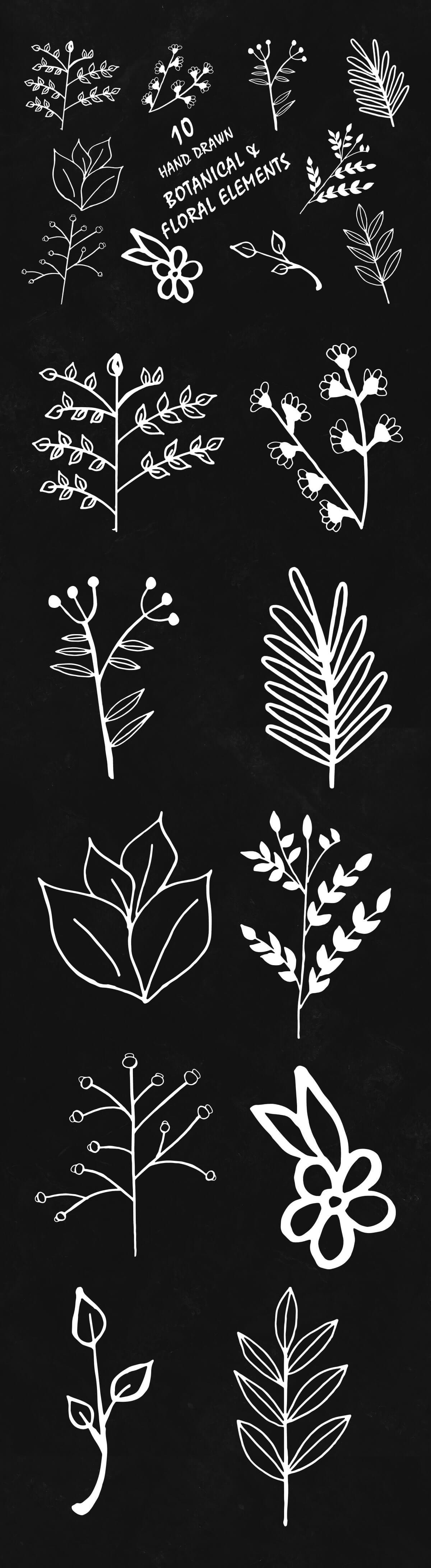 Free Handmade Botanical & Floral Elements