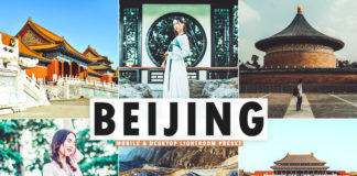 Free Beijing Lightroom Preset