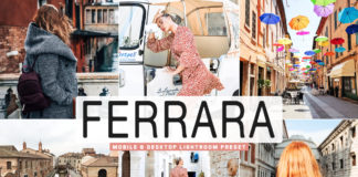 Free Ferrara Lightroom Preset