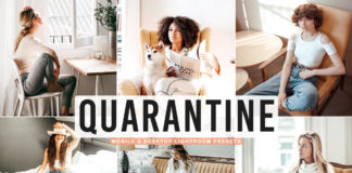 Free Quarantine Lightroom Preset