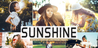 Free Sunshine Lightroom Preset