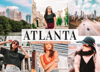 Free Atlanta Lightroom Presets
