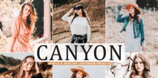 Free Canyon Lightroom Presets