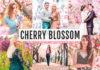 Free Cherry Blossom Lightroom Presets