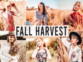 Free Fall Harvest Lightroom Presets