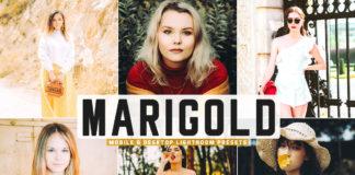 Free Marigold Lightroom Presets