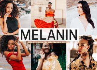 Free Melanin Lightroom Presets