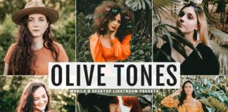Free Olive Tones Lightroom Presets