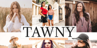 Free Tawny Lightroom Presets