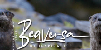 Free Beaversa Display Font