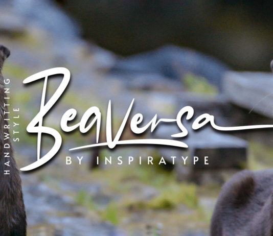 Free Beaversa Display Font