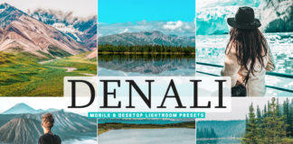 Free Denali Lightroom Presets
