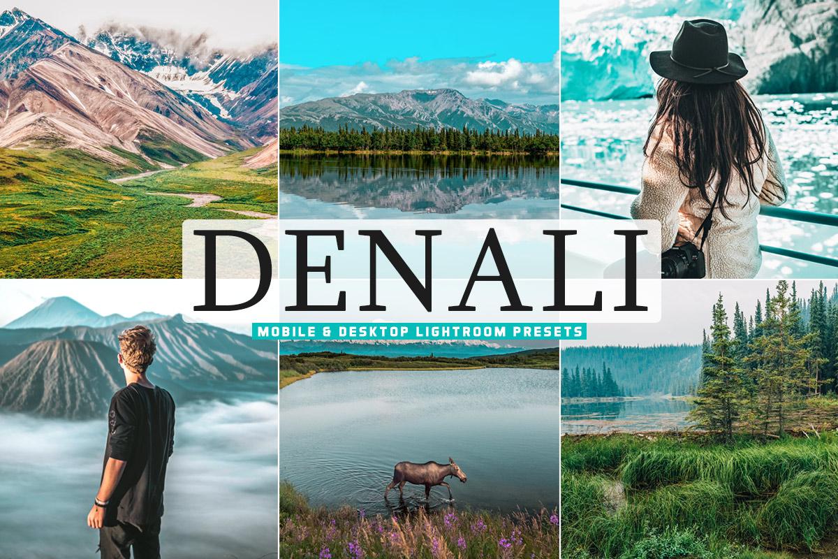 Free Denali Lightroom Presets