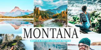 Free Montana Lightroom Presets