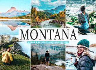 Free Montana Lightroom Presets