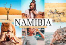 Free Namibia Lightroom Presets