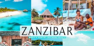 Free Zanzibar Lightroom Presets