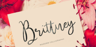 Free Brittney Calligraphy Font