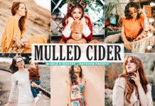 Free Mulled Cider Lightroom Presets