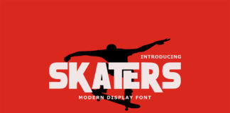 Free Skaters Display Font