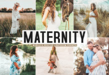 Free Maternity Lightroom Presets