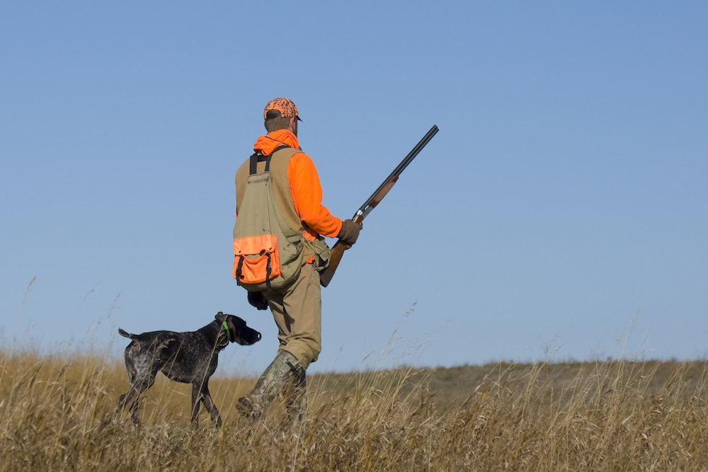 Man wearing blaze orange while hunting with his dog