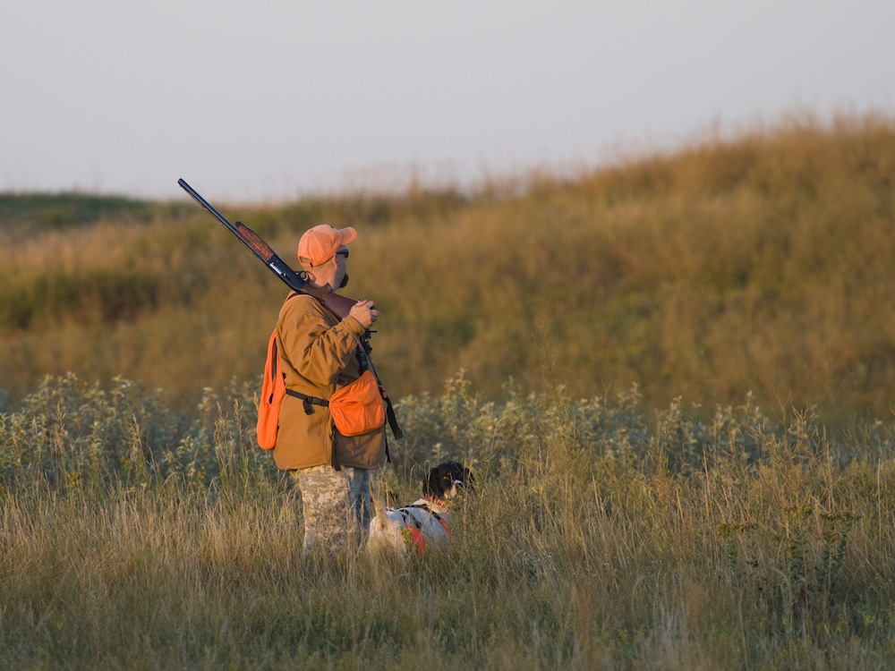 man hunting with a dog wearing blaze orange