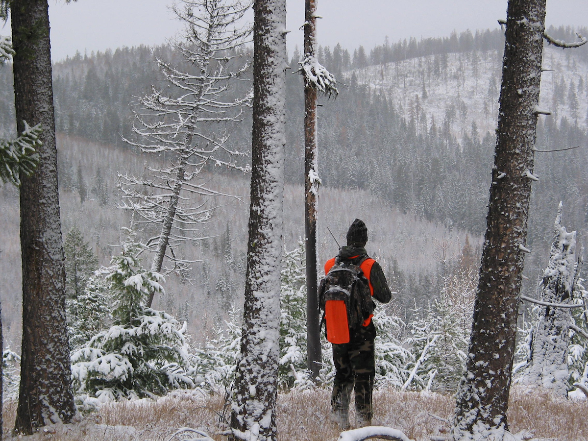 A young hunter is standing in a light snow and watching for animals.