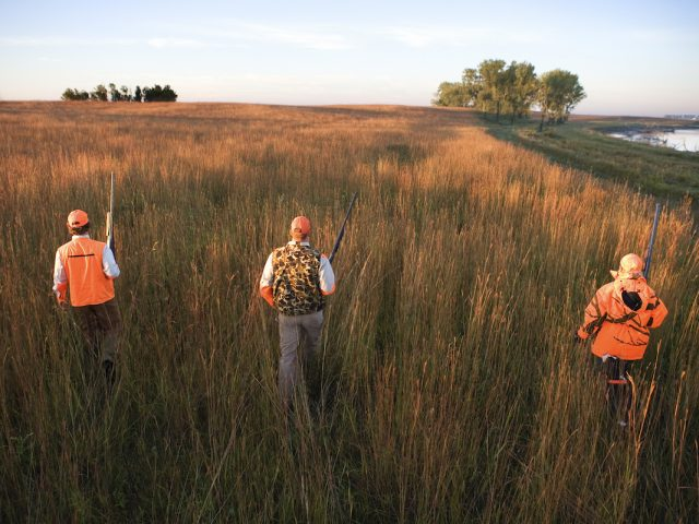 Hunters walking through field