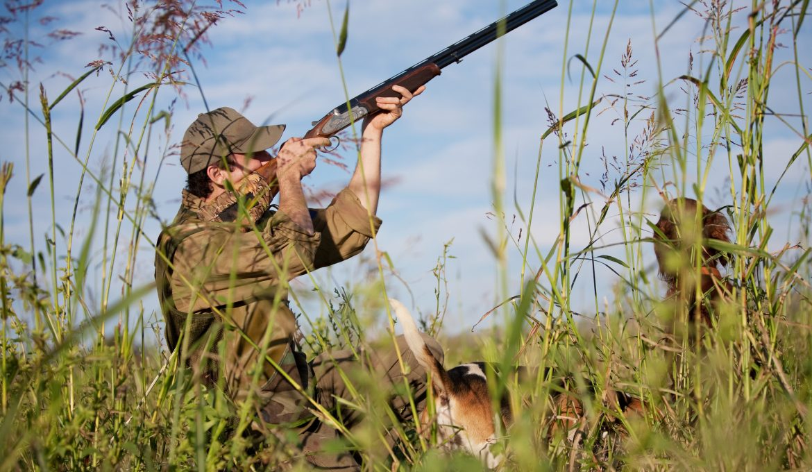 A man safely hunting with a shotgun