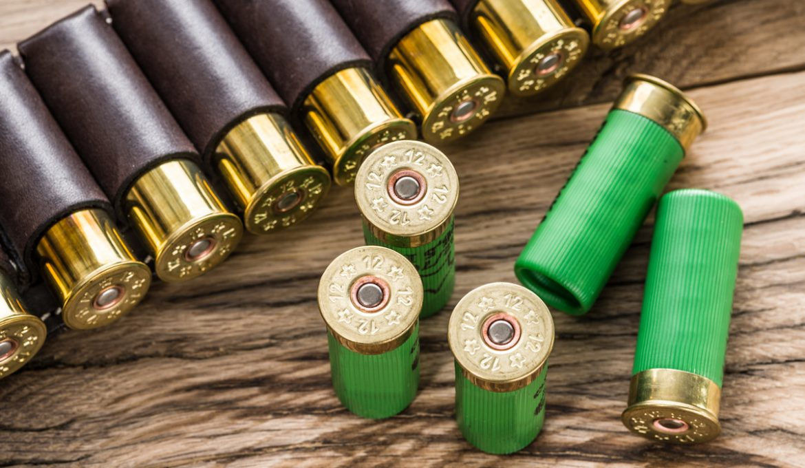 A Primer on Hunting Ammunition