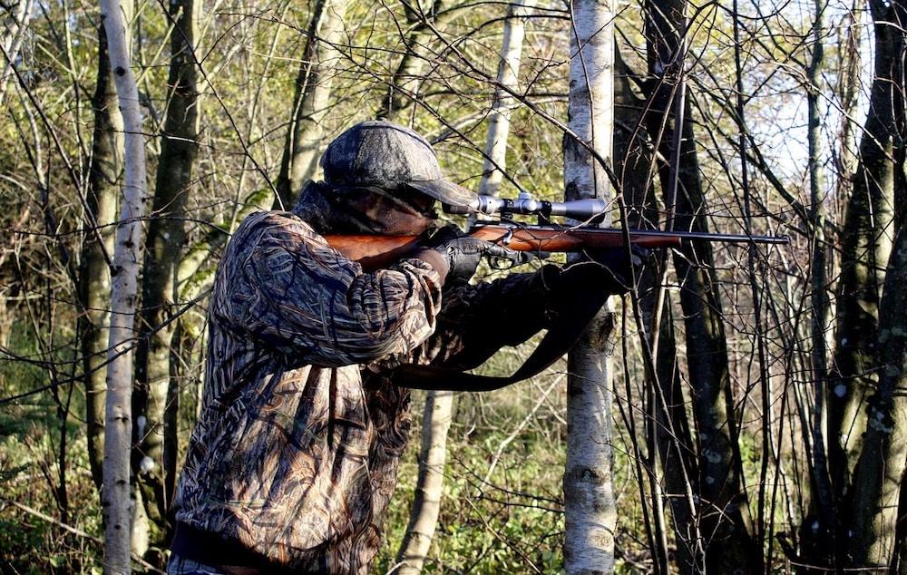 Hunter Stalking