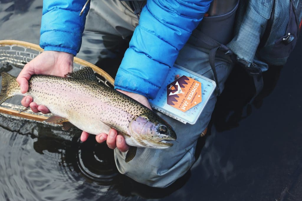 person holding a trout near water