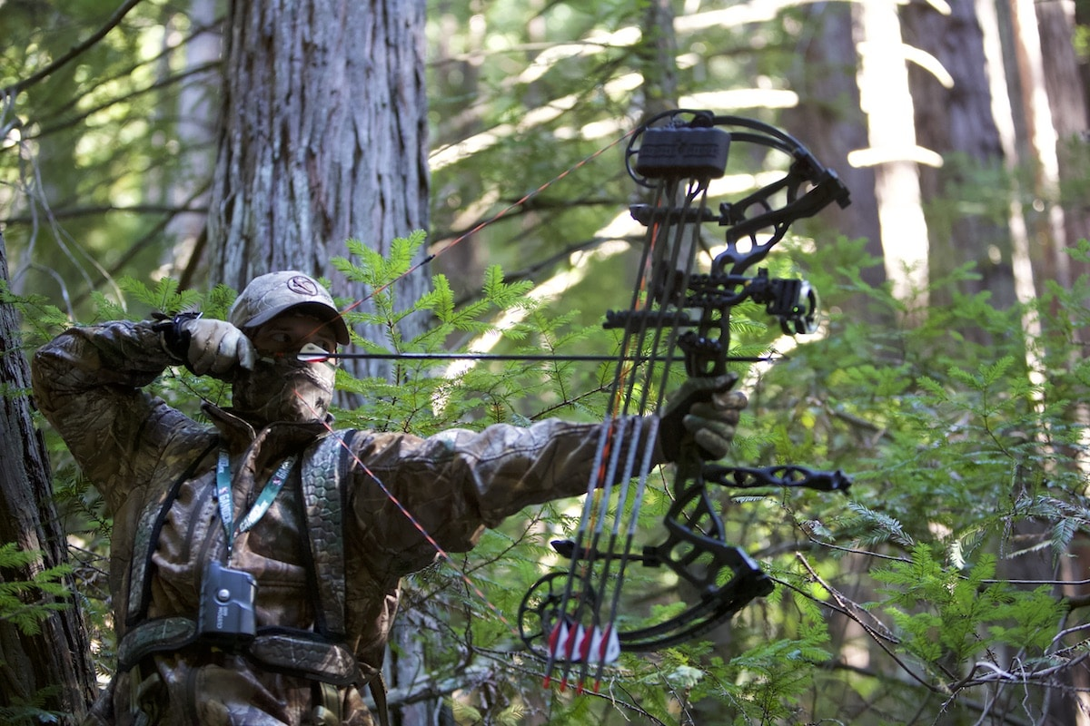 Bow hunter shooting a bow