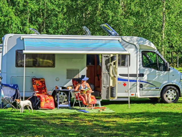 How to Keep Your RV Interior Clean When Traveling with Pets