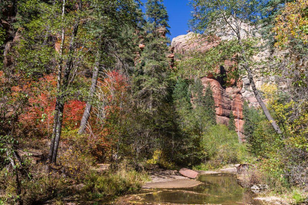 oak creek canyon trail