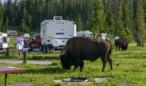 best-national-parks-for-rv-camping-yellowstone-national-park