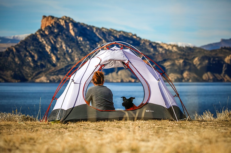 Woman camping for free near a lake with her dog
