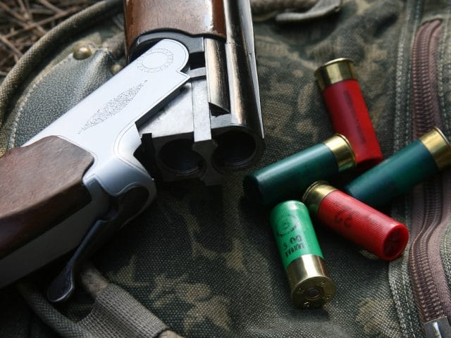 Shotgun And Cartridges