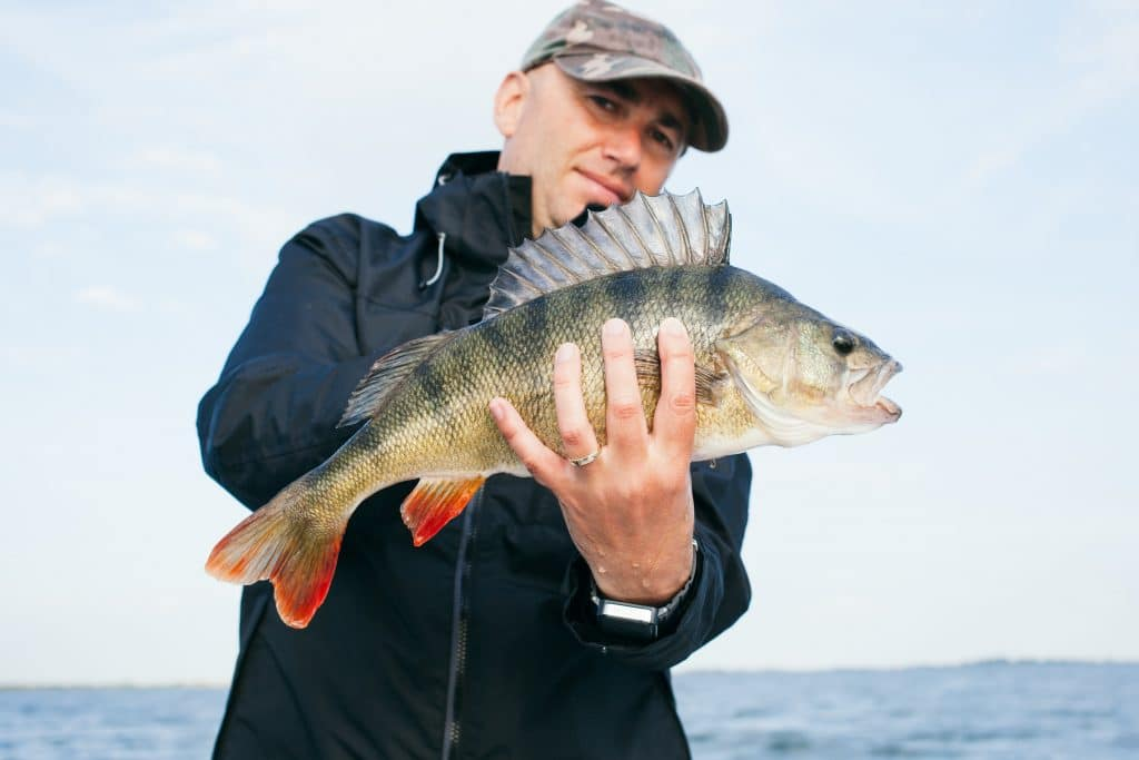 fish you can catch in Lake Huron