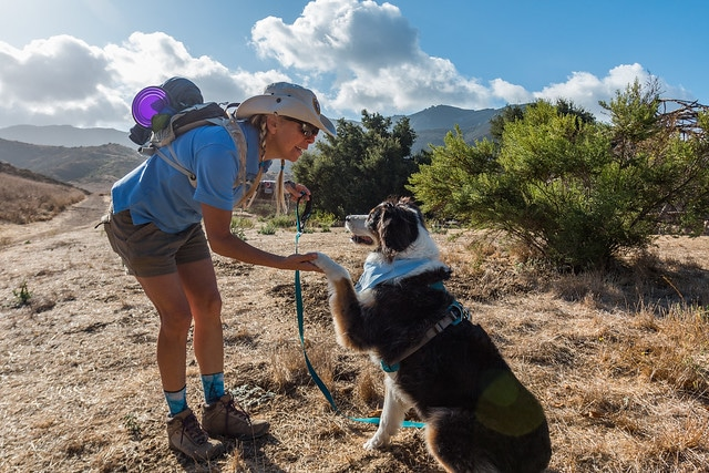 Dog Friendly National Parks for Hiking With Your Best Friend
