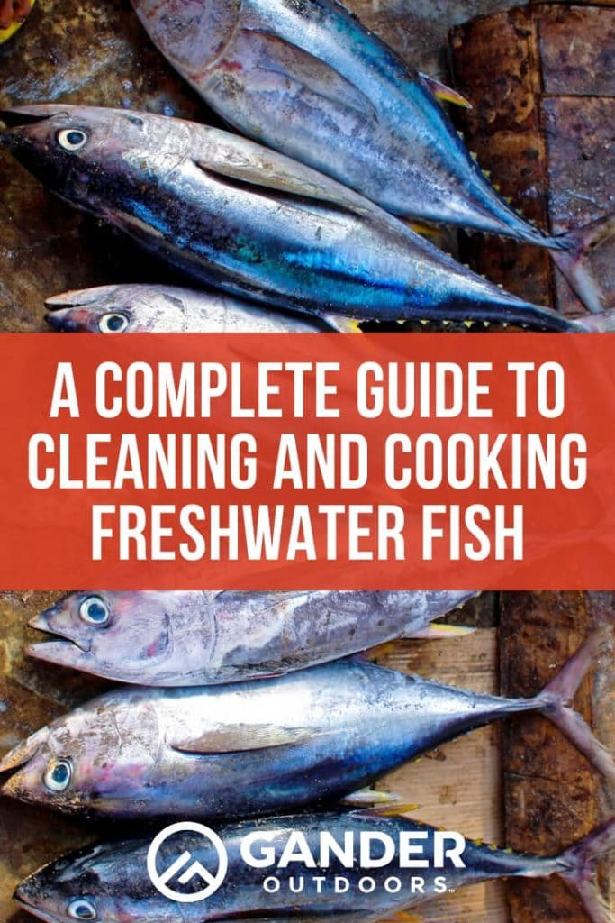 A complete guide to cleaning and cooking freshwater fish