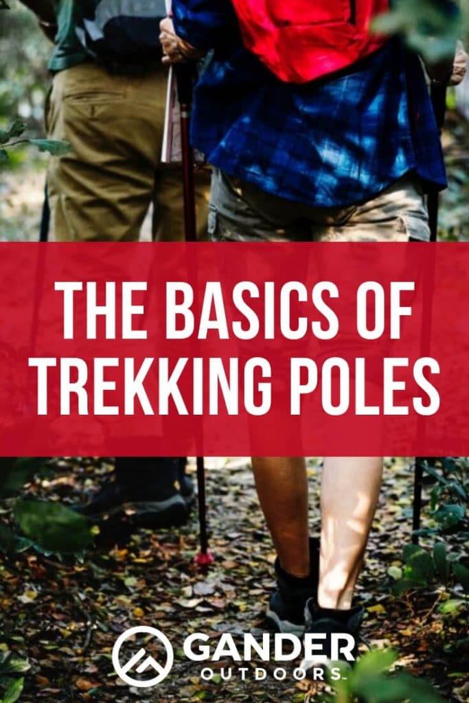 The basics of trekking poles