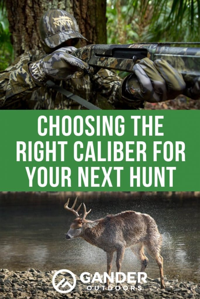 Choosing the right caliber for your next hunt