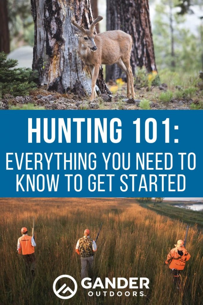 Hunting 101 - everything you need to know to get started