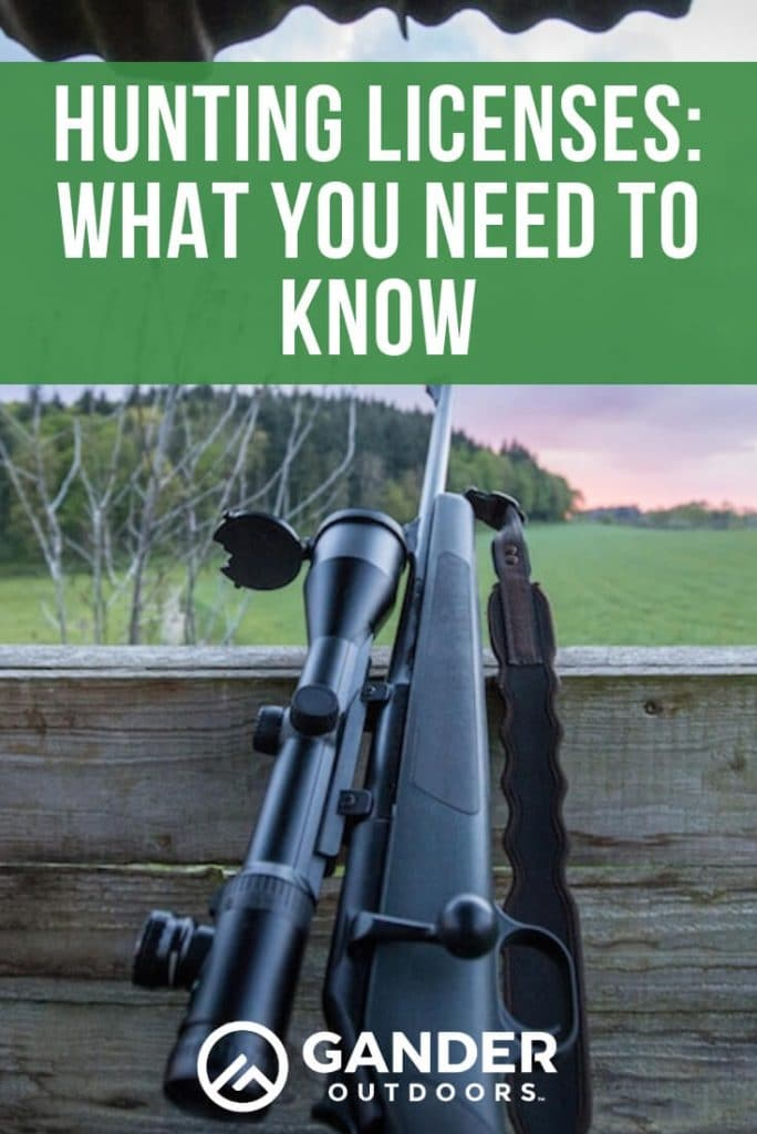 Hunting licenses - what you need to know