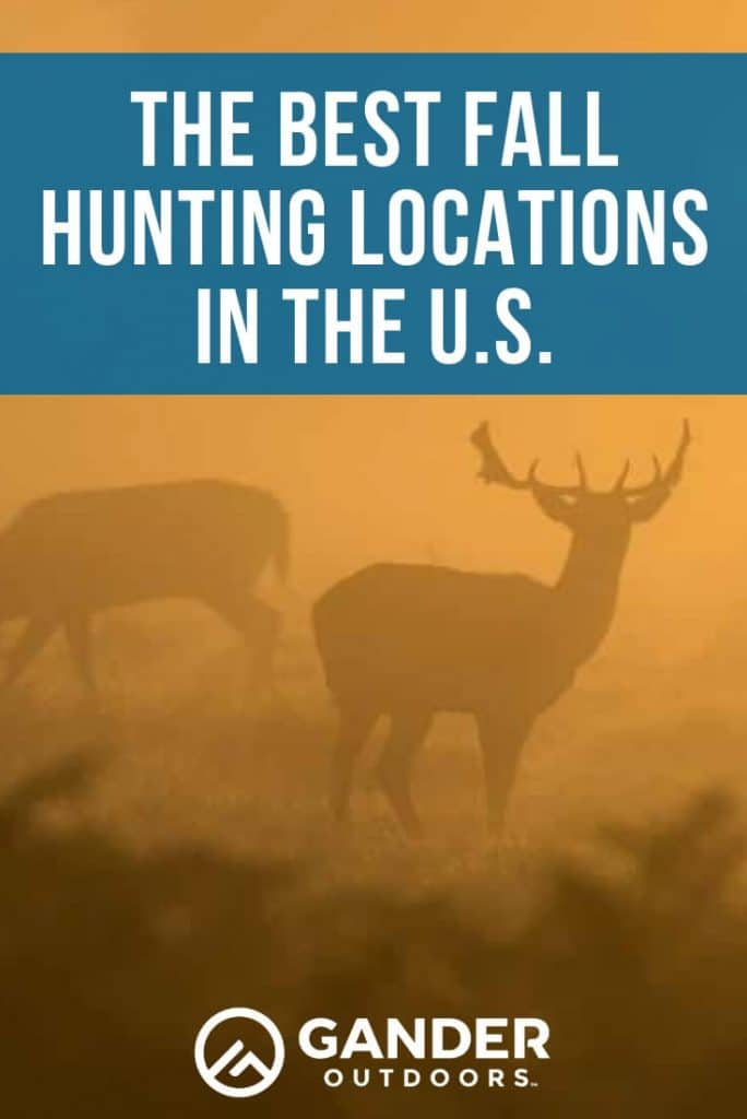 The best fall hunting locations in the U.S.